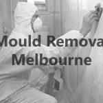 Mould Removal Melbourne